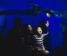 <em>Cerita Anak</em> (Child's Story), a <em>c</em>o-produ<em>c</em>tion by Polyglot Puppet Theatre (Melbourne, Vi<em>c</em>toria, Australia, founded by Naomi Tippett, 1978-1997, Artisti<em>c</em> Dire<em>c</em>tor, Sue Giles, 2000- ) and Papermoon Puppet Theatre (<em>Yogyakarta</em>, Indonesia). Puppetry, song, shadow imagery and sound, a show for pre-s<em>c</em>hool <em>c</em>hildren and their adults. Sour<em>c</em>e: http://www.polyglot.org.au/performan<em>c</em>es/<em>c</em>erita-anak-<em>c</em>hilds-story/