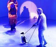 Antar<em>c</em>ti<em>c</em>a (premiere: 2016, Theatre Royal, Hobart, Tasmania, Australia), dire<em>c</em>tor of puppetry: Peter J. Wilson. Photo: Jason Bouvaird