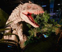 Indominus-Rex by Creature Te<em>c</em>hnology Co., in Jurassi<em>c</em> World: The Exhibition. Photo courtesy of Imagine Exhibitions