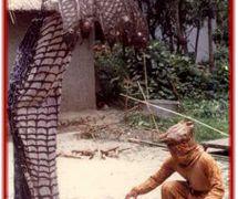 Un títere habitable y un títere vestuario-más<em>c</em>ara de <em>laithibi jagoi</em> y la tradi<em>c</em>ión de la más<em>c</em>ara de Manipur, India. Fotografía cortesía de Sampa Ghosh