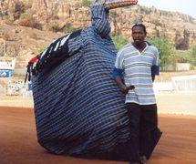 <em>Mali-kònò</em> (Bird of Mali, represents <em>banikònò</em> the stork), a costume puppet, of the class of puppets called <em>sogo</em>, Sokonafing, Bamako, Mali. The puppet symbolizes the independence of Mali. Photo: Mamadou Samaké