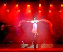 <em>Ribbon Dance</em> (长绸舞, 1996) by Sichuansheng Damuou Juyuan (Beiqiandao, Shunqing District, Nanchong, Sichuan Province, People's Republic of China), direction: Tang Guoliang, design/construction: Shu Shilin, Zhao Qing, Xu Xueshu, Xian Guanghui, Hu Xingying, puppeteer: Zeng Biyong. Rod puppet, height: 180-200 cm
