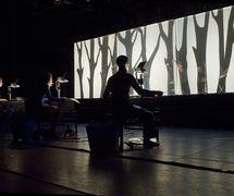 <em>Olek schoot een beer</em> (title in French: <em>Olek tire un Ours</em>, 2009) by Theater Taptoe (Ghent, Belgium), direction: Dirk De Strooper, design: Luk De Bruyker, Dirk De Strooper, construction: Dirk De Strooper, puppeteers: Roel Bouquet, Emilie De Roo, Ann De Prest. Shadow theatrre with three overhead projectors. Photo: Luk Monsaert